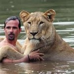 African Lions New Endangered Species with Kevin Richardson