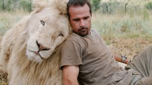African Lions New Endangered Species