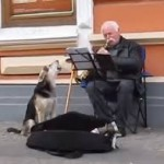 Ukrainian Stray Dog Sings With One Man Street Performer