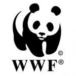 200 Ways to Support | World Wildlife Endangered Species Fund Center