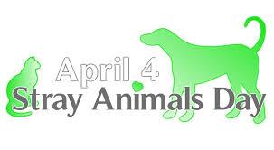 April 4 World Stray Animals Day