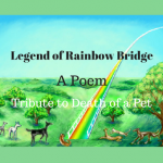 Legend of Rainbow Bridge Poem, a Tribute to Death of a Pet
