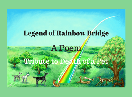 Legend of Rainbow Bridge Poem, Tribute to Death of a Pet