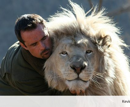 Kevin Richardson Playing Football with Wild Lions Video