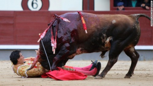 Madrid Bullfight Suspended