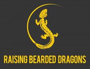 Raising Bearded Dragons Ultimate Care Guide