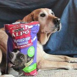 Alpo Wholesome Dog Biscuit Review, #AlpoDogBiscuit