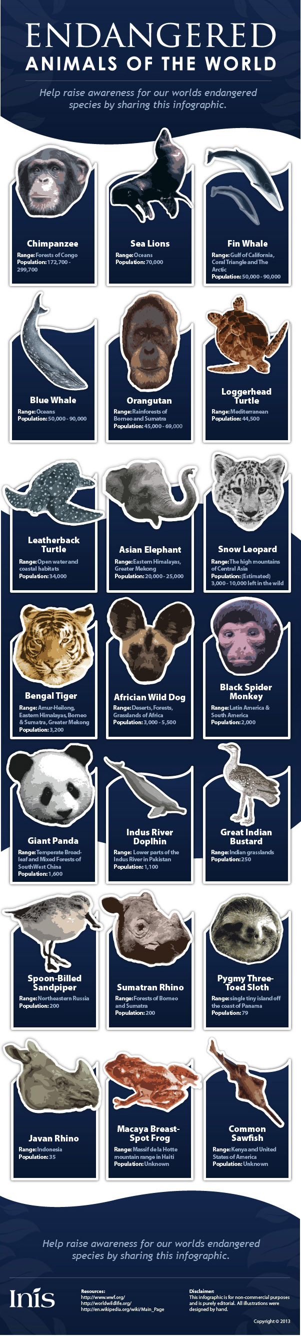 Endangered Animals of the World Infographic