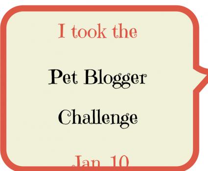 Animal Bliss Pet Blogger Challenge 2015 Blog Hop