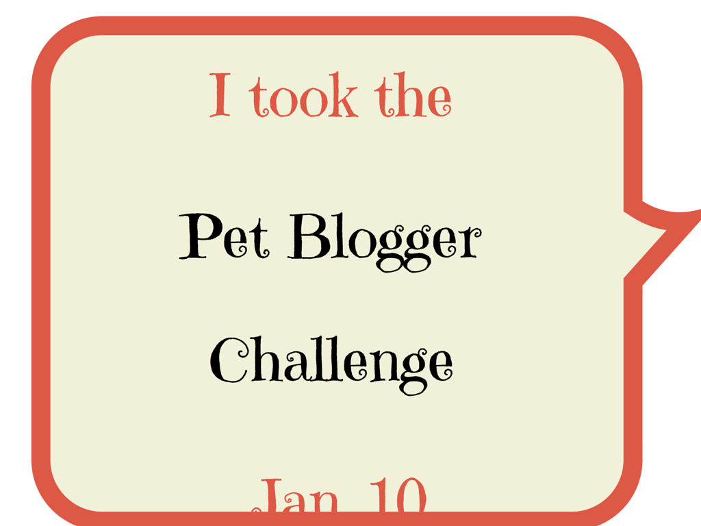 5th Annual Pet Blogger Challenge 2015 Blog Hop