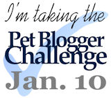Fifth Annual Pet Blogger Challenge 2015