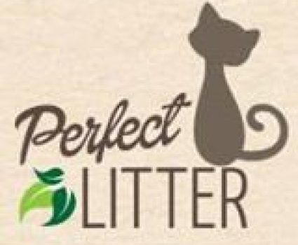 Finding Natural Cat Litter Box for Your Pet | Perfect Litter