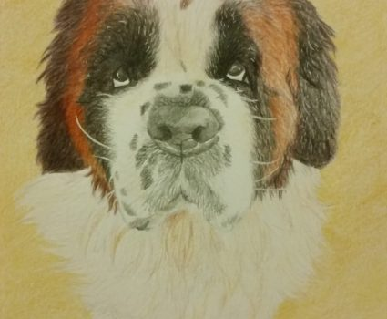Pet Portraits by Holly Witts