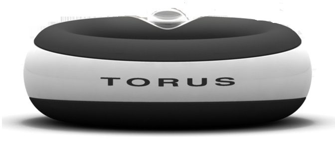 torus water bowl review