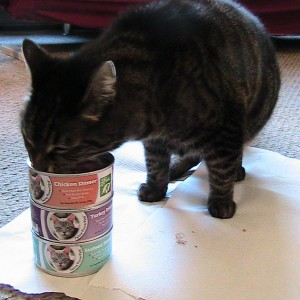 Only Natural Pet Feline PowerFood REVIEW