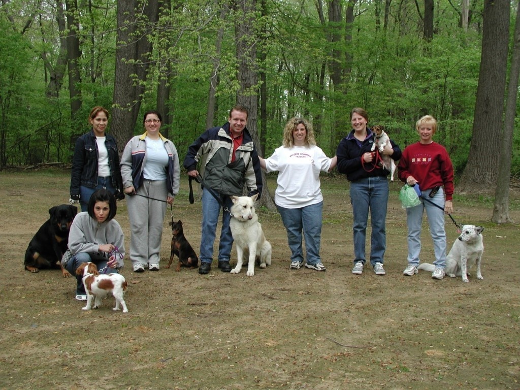 The Benefits of Socialization for Every Dog