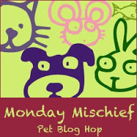 Jax Dog Mom - Monday Mischief Blog Hop