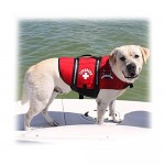 Best Dog Life Jacket Vest for Your Dog for Maximum Safety