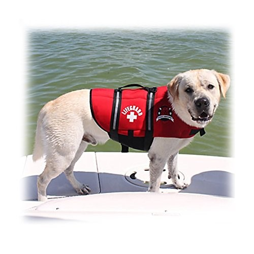 Best Dog Life Jacket Vest for Your Dog