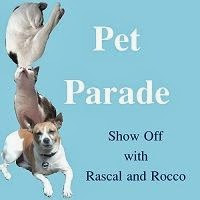 Pet Parade Rascal and Rocco Blog Hop Links