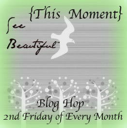 See Beautiful Blog Hop