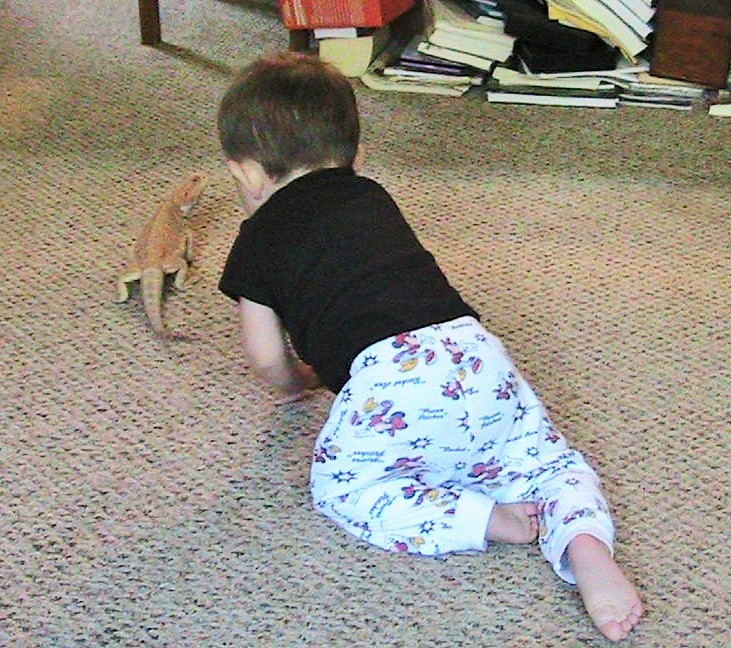 A Boy and a Bearded Dragon : Wordless Wednesday Post