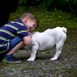 Why You MUST Include the Kids in Your Dog's Obedience Training
