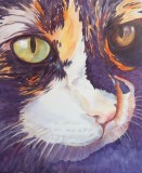 Animal Portrait Artist : Sheri Hoeger, USA : Animal Bliss