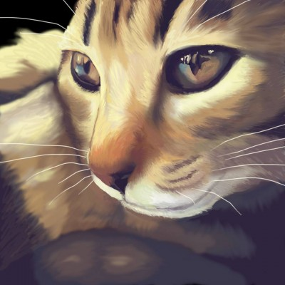 Animal Portrait Artist - Jenna Whittaker, Mississippi, USA