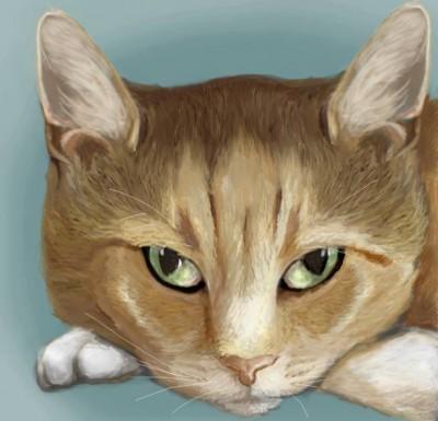 Animal Portrait Artist - Jenna Whittaker, Mississippi, USA