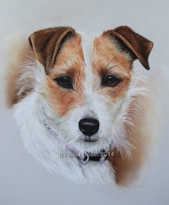 Pet Portrait Artist: Julie Heath: Ruthin, North Wales, UK