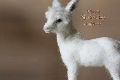 Animal Portrait Artists, Minzoo Nfelting - Madrid, Spain