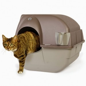 3 Genius Products Your Cats Should Have