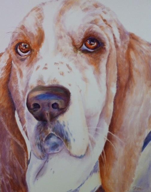 Featuring Animal Portrait Artist : Sheri Hoeger, USA : Animal Bliss