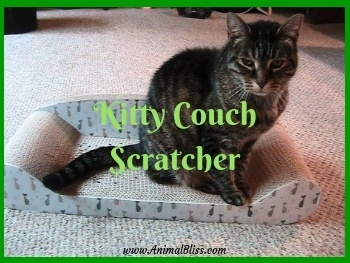 Kitty Couch Scratcher - No More Shredded Furniture!