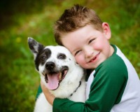 Choosing the right dog for your family with children