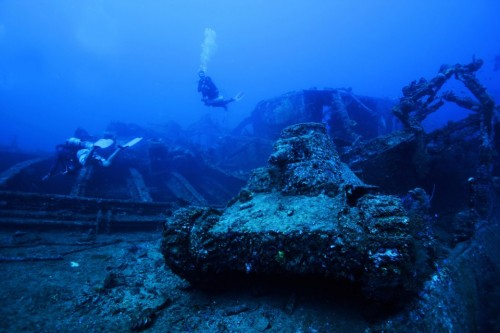 Check out these fantastic underwater adventures from around the world.