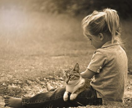 How Cats Can Prepare You for Raising a Child
