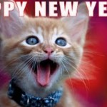 Cats Singing Auld Lang Syne 2016, We Remember Jake