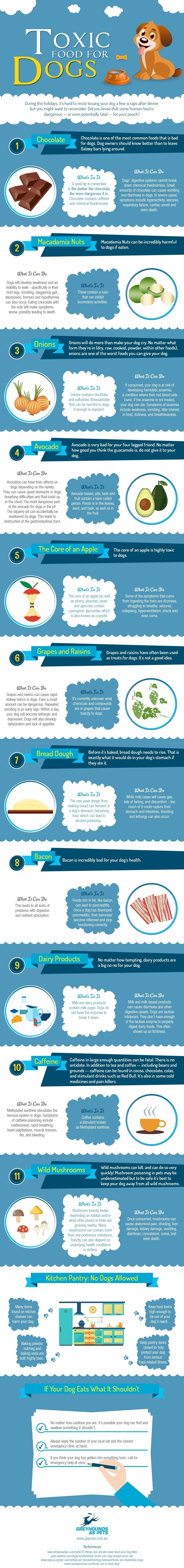 Infographic–Toxic-Food-for-Your-Dog