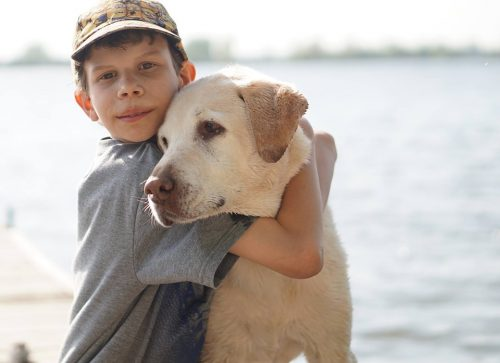 When choosing a dog for your children, there are many things you need to consider..