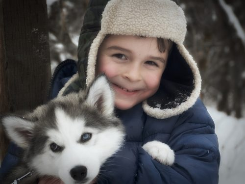 When choosing a dog for your children, there are many things you need to consider.