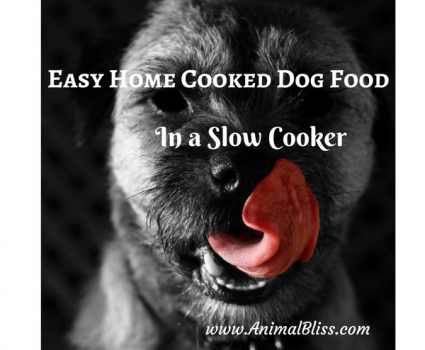 How to Make Easy Home Cooked Dog Food in a Slow Cooker
