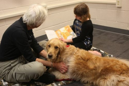 Trained therapy dogs have many uses, helping and healing in many health fields.