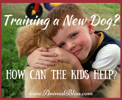 Training a New Dog: Some Ideas on How You Can Get the Kids Involved