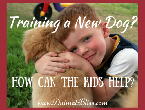 Training a new dog? How to Get the Kids to Help