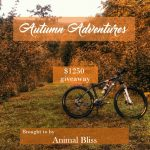 Autumn Adventures Fall Giveaway, ends 10/15