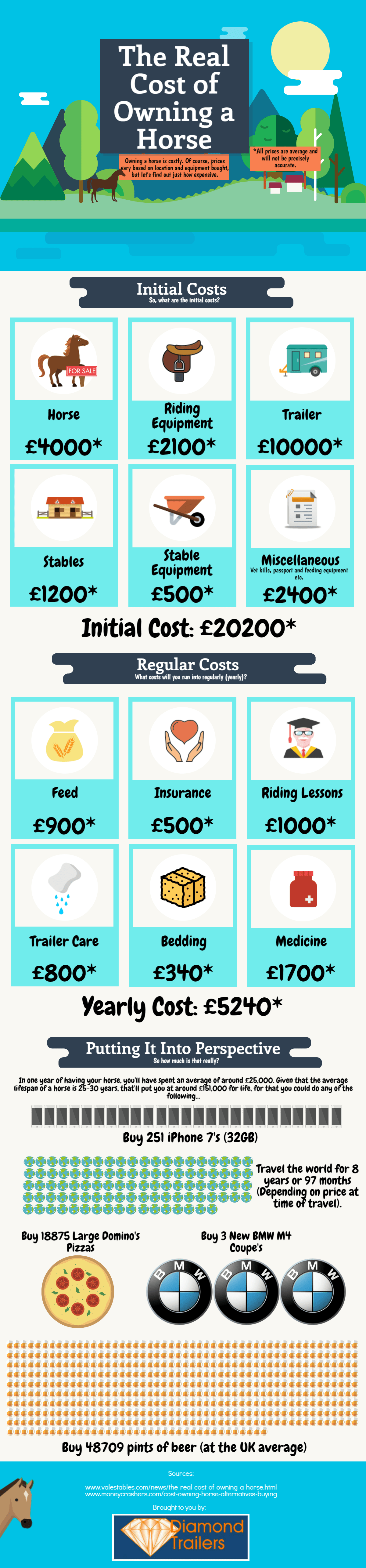 The Cost of Owning a Horse