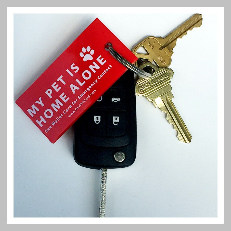 Emergency keychain lets first responders know who to contact in case you can't get home because of an emergency.
