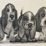 Shannon Marie Schacht – Animal Portrait Artist
